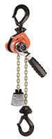 PRODUCT PHOTO 0215 CM Hoist Series 603 SHORTER CHAIN HR